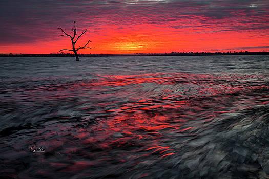 Icy Sunrise by Crystal Socha