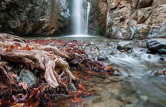 Idyllic Waterfall in Autumn by Michalakis Ppalis