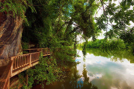 Ijam Nature Park Boardwalk along the Tennessee River by Dee Browning