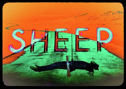 I'm Only Sleeping # 4.9 by Ben Stein