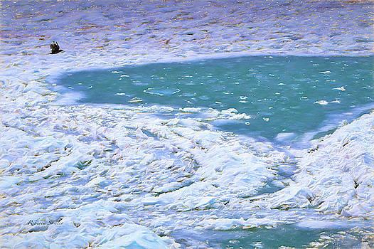 In Search of Open Water by Rebecca Samler