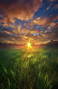In The Arms of an Angel by Phil Koch