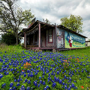 Independence Texas by David Morefield