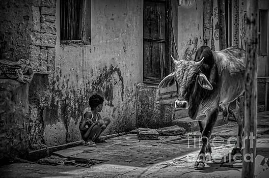 India - Street Photo bw by Stefano Senise