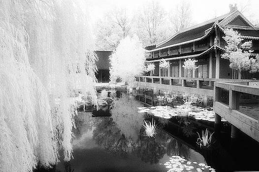 Infrared Chinese Architecture by Fred Hood