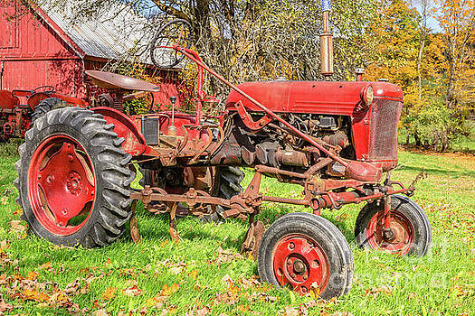 International Harvester F-Cub Vintage tractor by Edward Fielding