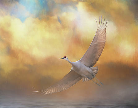 Into the clouds by Gloria Anderson