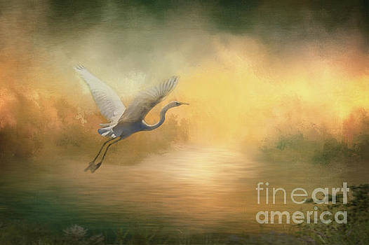 Into The Sunset by Kelley Freel-Ebner