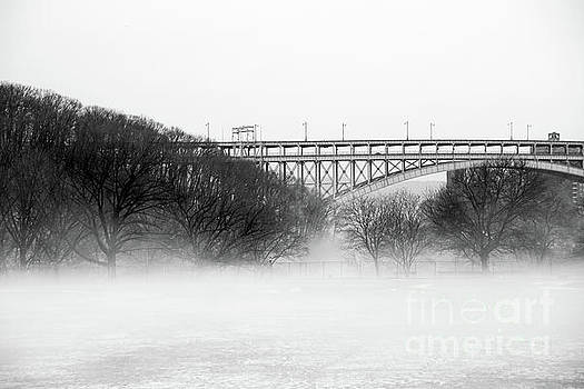 Inwood Hill with Fog by Cole Thompson