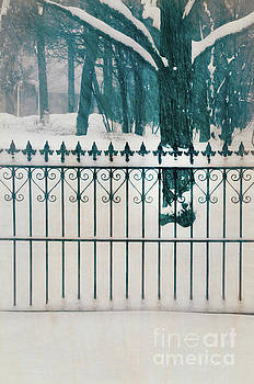 Iron Fence and Woods in Winter by Jill Battaglia