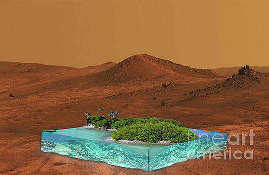 Is there life on Mars? by Lutz Roland Lehn