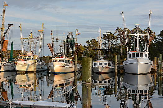 Island Harbor by Dan Williams