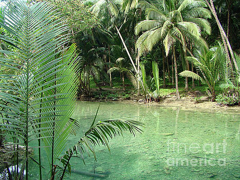 Asia Visions Photography - Island of Cebu and its greenery