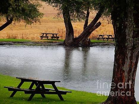 Beatrice Cox - The Pond in the Rain