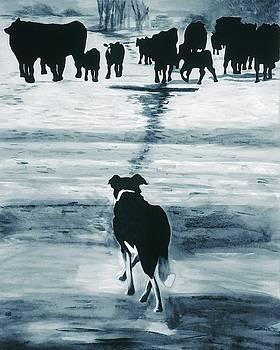 Jack faces doen the cows by Rhondda Saunders