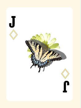 Jack of Pollinators by Emily Warren