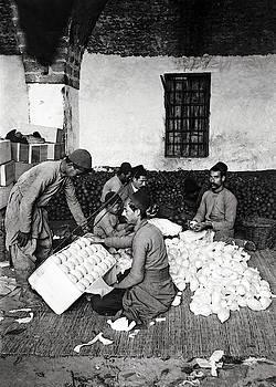 Jaffa Oranges 1920 by Munir Alawi