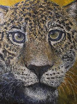 Jaguar by Elin Johnsen