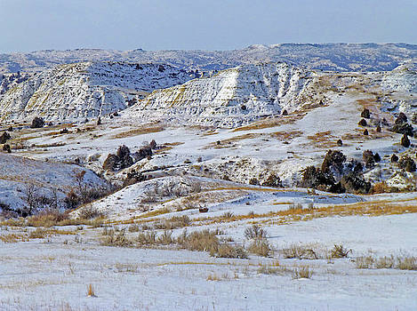 January Badlands Enchantment by Cris Fulton