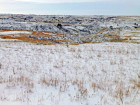 January Badlands Prairie by Cris Fulton