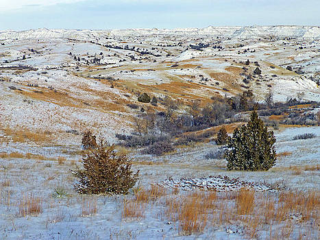 January Grasslands and Badlands by Cris Fulton