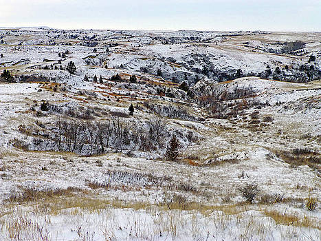 January Prairie by Cris Fulton