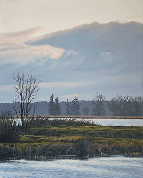 January Skies by Peter Mathios
