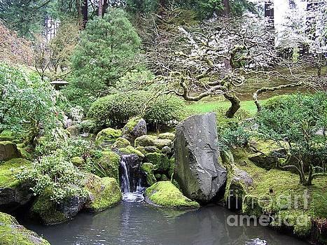 Japanese Garden by Julie Rauscher