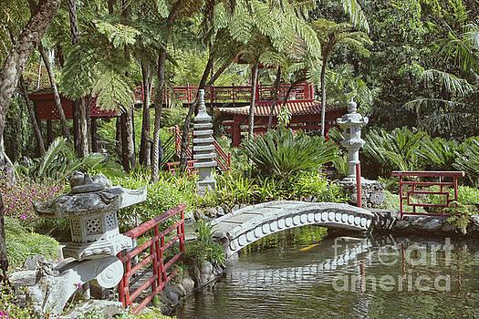 Japanese Garden by Lynn Bolt