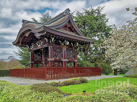 Japanese Landscape, Kew Gardens by Leigh Kemp