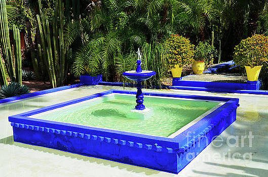 Jardin Majorelle Garden Marrakech 2 by Del Art