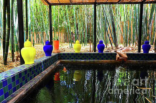 Jardin Majorelle Garden Marrakech 3 by Del Art