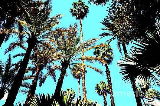 Jardin Majorelle Marrakech Palms 2 by Del Art