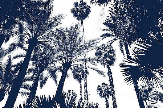 Jardin Majorelle Marrakech Palms Indigo 1 by Del Art