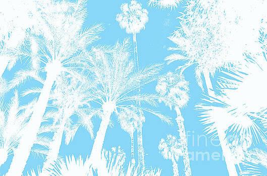 Jardin Majorelle Marrakech Palms Sky Blue 2 by Del Art