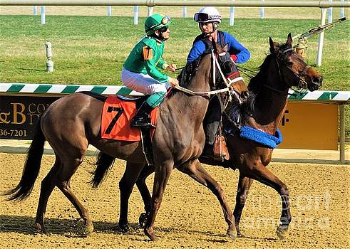J D Acosta - Empire Panther - Laurel Park by Anthony Schafer