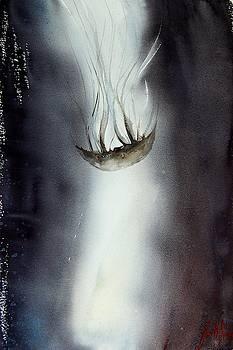 Jellyfish 8 by James Nyika