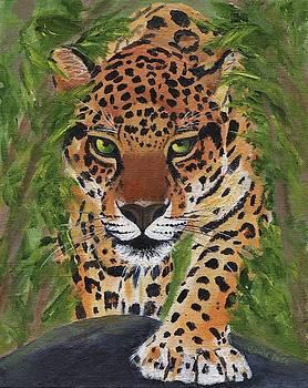 Jungle Cat by Jamie Frier