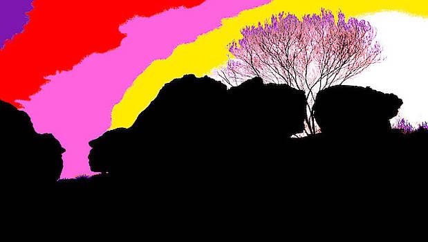 Kakadu Sunset #5 - Pop Art  by Lexa Harpell