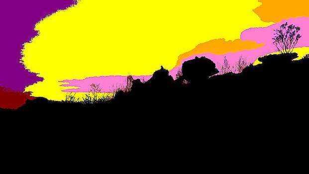 Kakadu Sunset #4 - Pop Art by Lexa Harpell