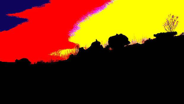 Kakadu Sunset #6 - Pop Art by Lexa Harpell