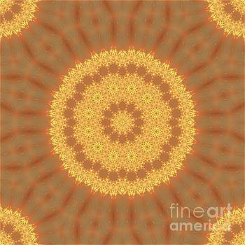 Kaleidoscope Of Gold by Denise Crawford