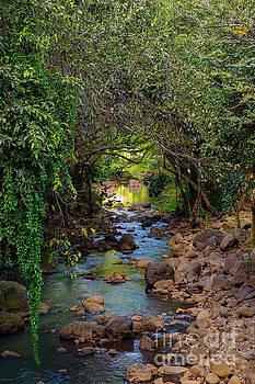 Asia Visions Photography - Kamananui Stream Waimea