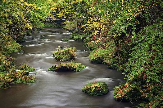 Kamenice river by Marek Ondracek