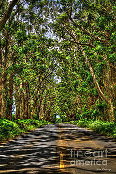 Kauai Tree Tunnel South Shore Kauai Hawaii Art by Reid Callaway