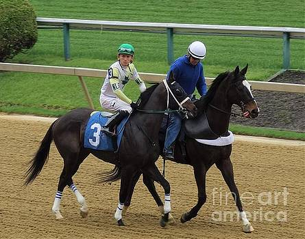 Kevin Gomez - Cheese On - Pimlico by Anthony Schafer