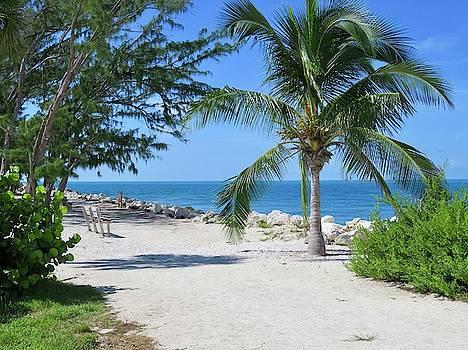 Key West Ocean View by Julie Harrington