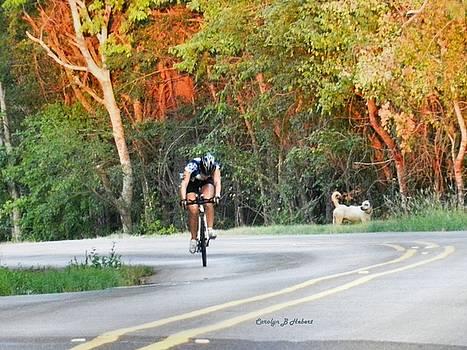 Killer Hill Time Trial Triathlete by Carolyn Hebert
