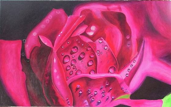 Kimberly's Rose by Suzahn King