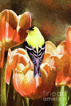 King Of The Tulips by Tina LeCour